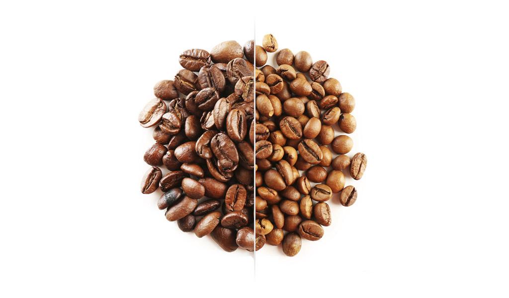 Arabica nebo robusta. V čem se liší a která je lepší?